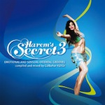 Harem's Secret 3 (2013)